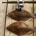 fishing rod and reel above 2 flounders