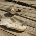 pompano beside fishing rod on plank
