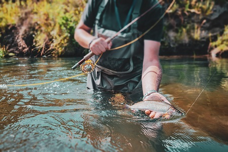 fisherman holds grayling in his hand